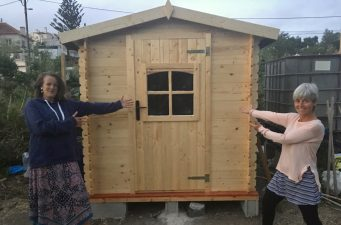 Celebrating building the shed